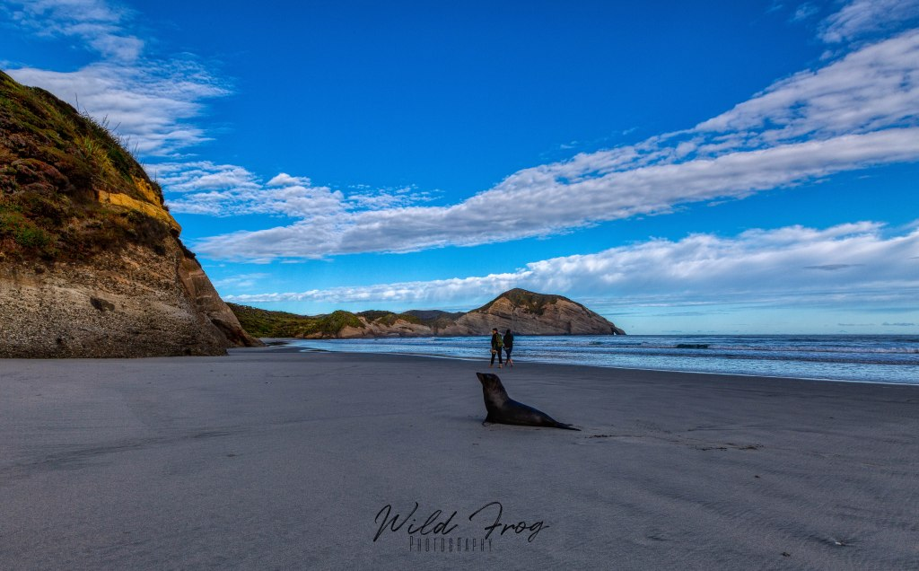 Wharariki Beach - Puponga New Zealand